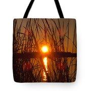 Sun In Reeds Tote Bag