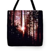 Sun In The Forest Two  Tote Bag