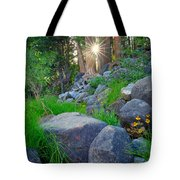 Sun In The Sequoias Tote Bag