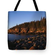 Sun Kissed Acadia Tote Bag