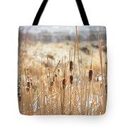 Sun Kissed Cattails - Casper Wyoming Tote Bag