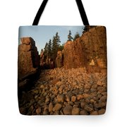 Sun Kissed Morning Tote Bag