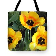 Tulips Kissed By The Sun Tote Bag