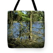 Sun Of The Loch Afternoon. Tote Bag