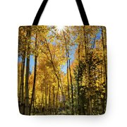 Sun Peaking Through The Aspens  Tote Bag