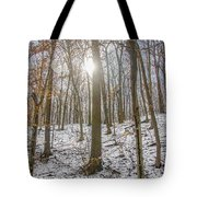 Sun Peaking Through The Trees - Fairmount Park Tote Bag
