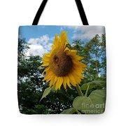 Sun Power Tote Bag