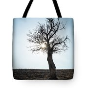 Sun Rays And Bare Lonely Tree Tote Bag