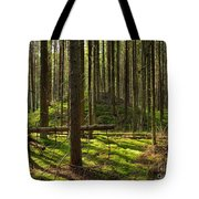 Sun Rays In Forest Tote Bag