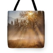 Sun Rays In Yosemite Ground Fog Tote Bag
