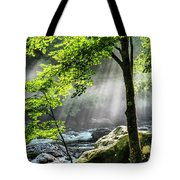 Sun Rays On Williams River  Tote Bag