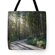 Sun Rays Through The Forest Tote Bag