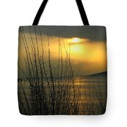 Sun Setting From Eastern Point Tote Bag