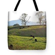 Sun Shadows Tote Bag