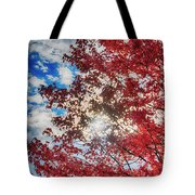 Sun Sky Clouds And A Red Maple Tote Bag