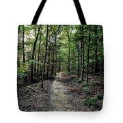 Sun Streaked Path  Tote Bag