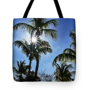 Sun Through Smathers Beach Palms Tote Bag
