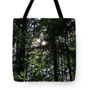 Sun Through Trees In Forest Tote Bag