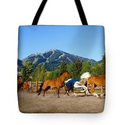 Sun Valley Stables Tote Bag