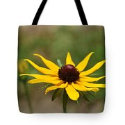 Sun Worshiper Tote Bag