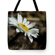 Sunbathing On A Daisy Tote Bag