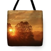 Sunbeam Through Cottonwoods Tote Bag