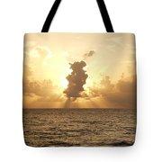 Sunblock Tote Bag