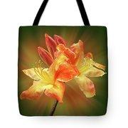 Sunburst Orange Azalea Tote Bag