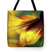 Sunburst Petals - 2 Tote Bag