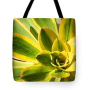 Sunburst Succulent Close-up 2 Tote Bag