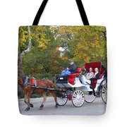 Sunday Afternoon In Central Park Tote Bag