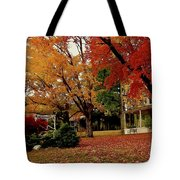 Sunday In The Country 3 Tote Bag