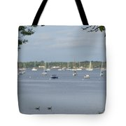 Sunday Morning Swim On Manhasset Bay In Port Washington, Ny Tote Bag