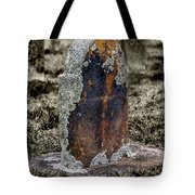 Sunday Visit Tote Bag