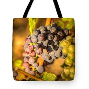 Sundrenched 0046 Tote Bag