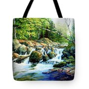 Sunfish Creek Tote Bag