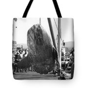Sunfish Mola Mola On Monterey's Wharf Two June 20 1946 Tote Bag