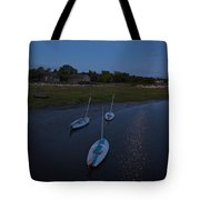 Sunfishes In Moonlight Tote Bag