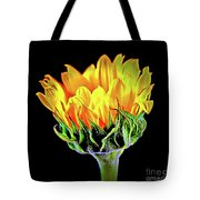 Sunflower 18-15 Tote Bag
