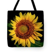 Sunflower 2017 12 Tote Bag