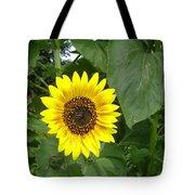 Sunflower 4 Tote Bag