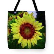 Sunflower After A Summer Rain Tote Bag