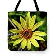 Sunflower Along Etiwanda Falls Trail In San Gabriel Mountains-california  Tote Bag