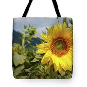 Sunflower And Peaks Of Otter Tote Bag