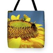 Sunflower Art Prints Honey Bee Sun Flower Floral Garden Tote Bag