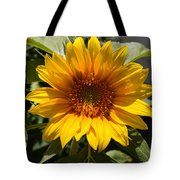 Sunflower Art- Summer Sun- Sunflowers Tote Bag