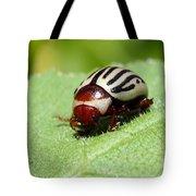 Sunflower Beetle Tote Bag