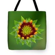 Sunflower Bud  Tote Bag