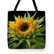 Sunflower - Doubleshine Tote Bag