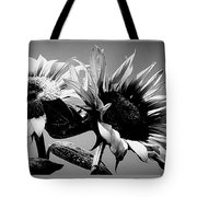 Sunflower Duo Bw Tote Bag